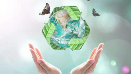 Nuevo proyecto de implementación de Envases Biodegradables
